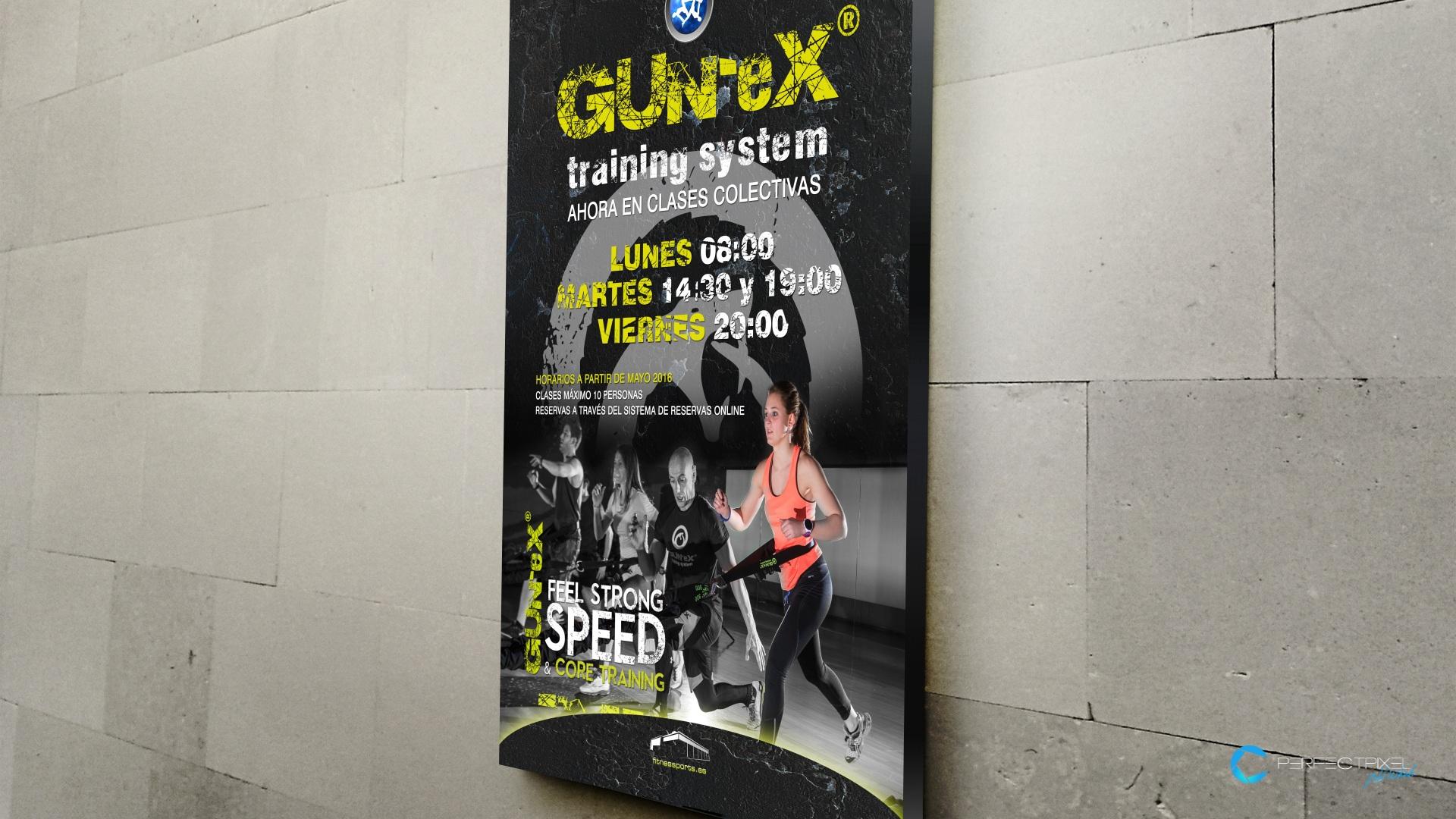 Gun-ex Training System Fitness Sports Valle las CAñas