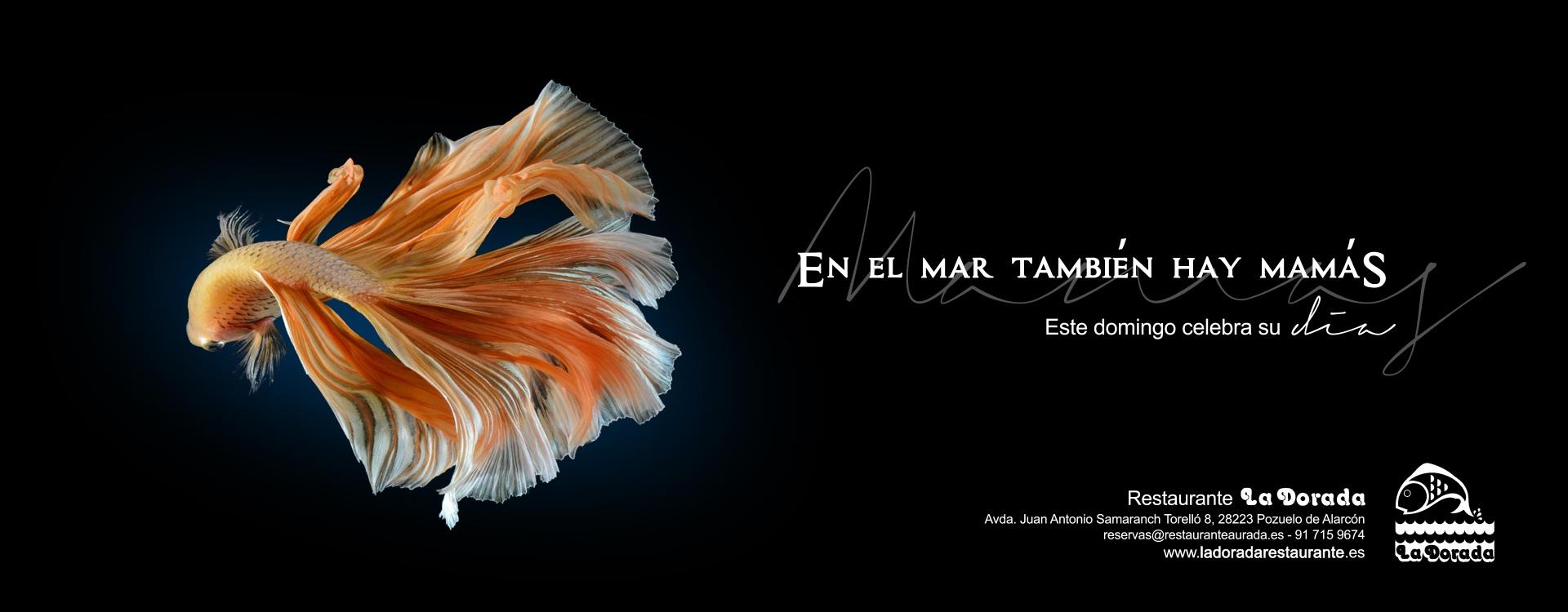 Diseño cartel publicitario restaurante La Dorada