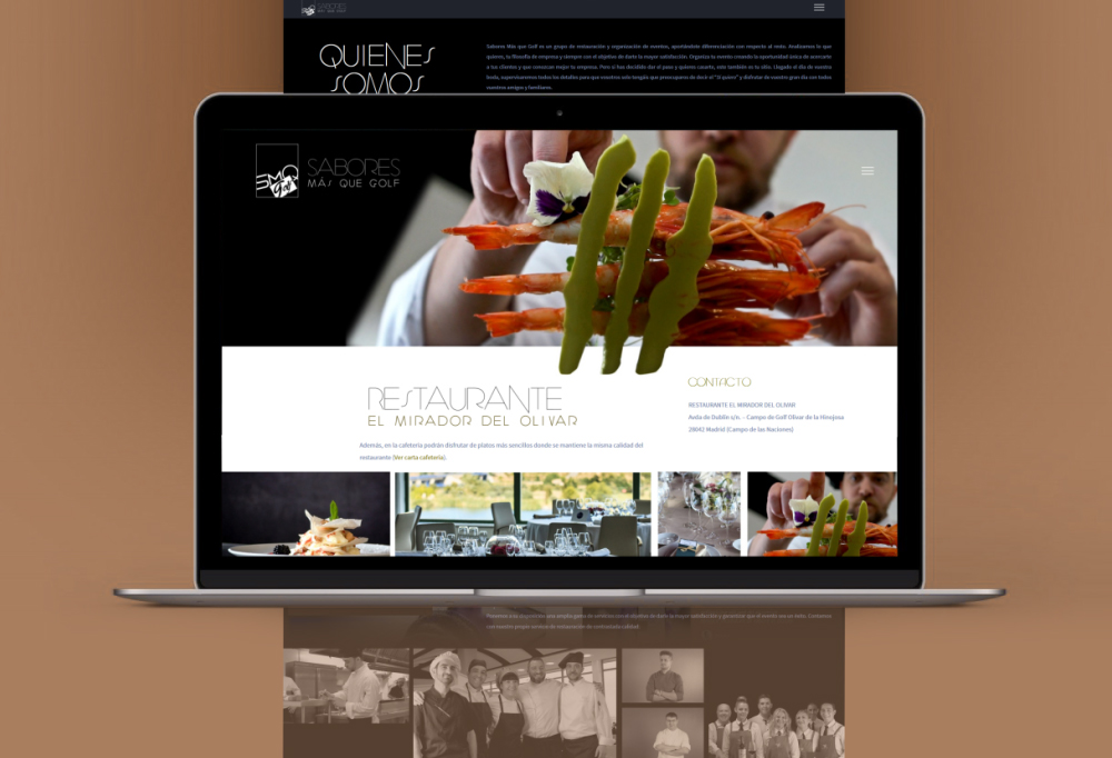 Diseño de paginas web Madrid Perfect Pixel Publicidad